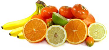 Vitamines et Nutritions