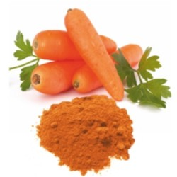 Natural Beta-Carotene 10% CWS-OB Powder, cold water dispersible
